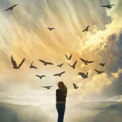 Saving paradise - visuel seul